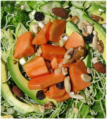 Hidden Treasures: Papaya Avocado Salad
